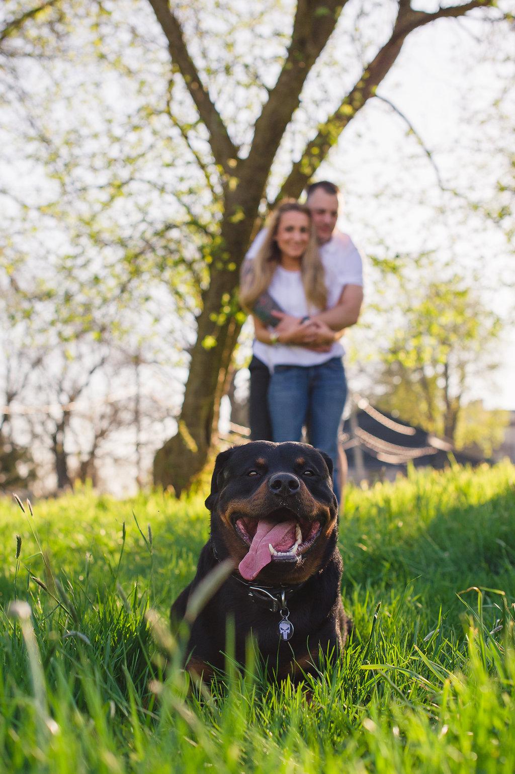 John-Jay-Homestead-Engagement-Photos-Greg-Lewis-Photography-1